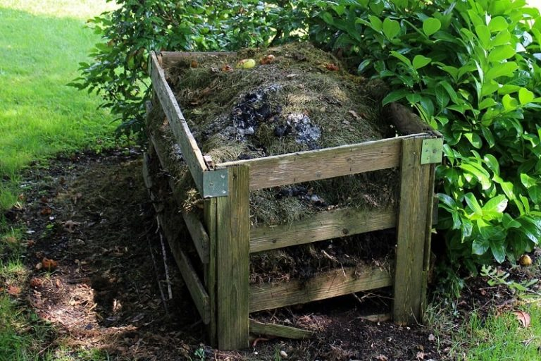 What Kind of Compost to use In a Vegetable Garden