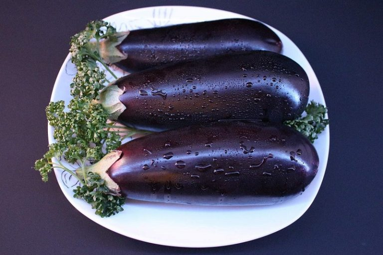 What Should The Inside of an Eggplant Look Like
