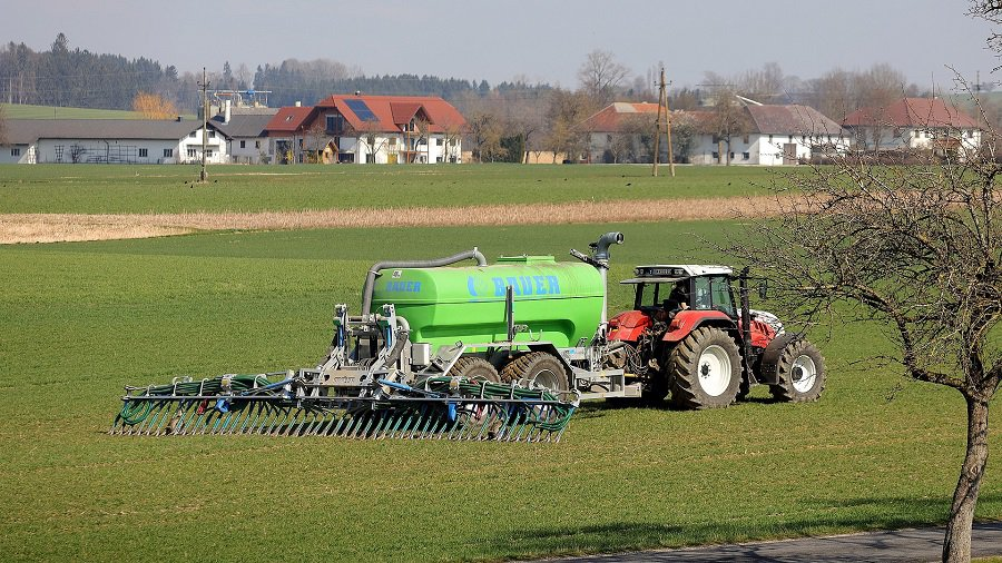 What Is 15-15-15 Fertilizer Used For